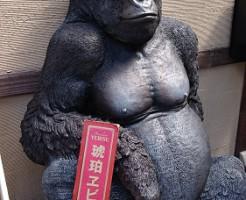 京都で発見したゴリラ!