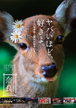 やばいほど奈良が好き