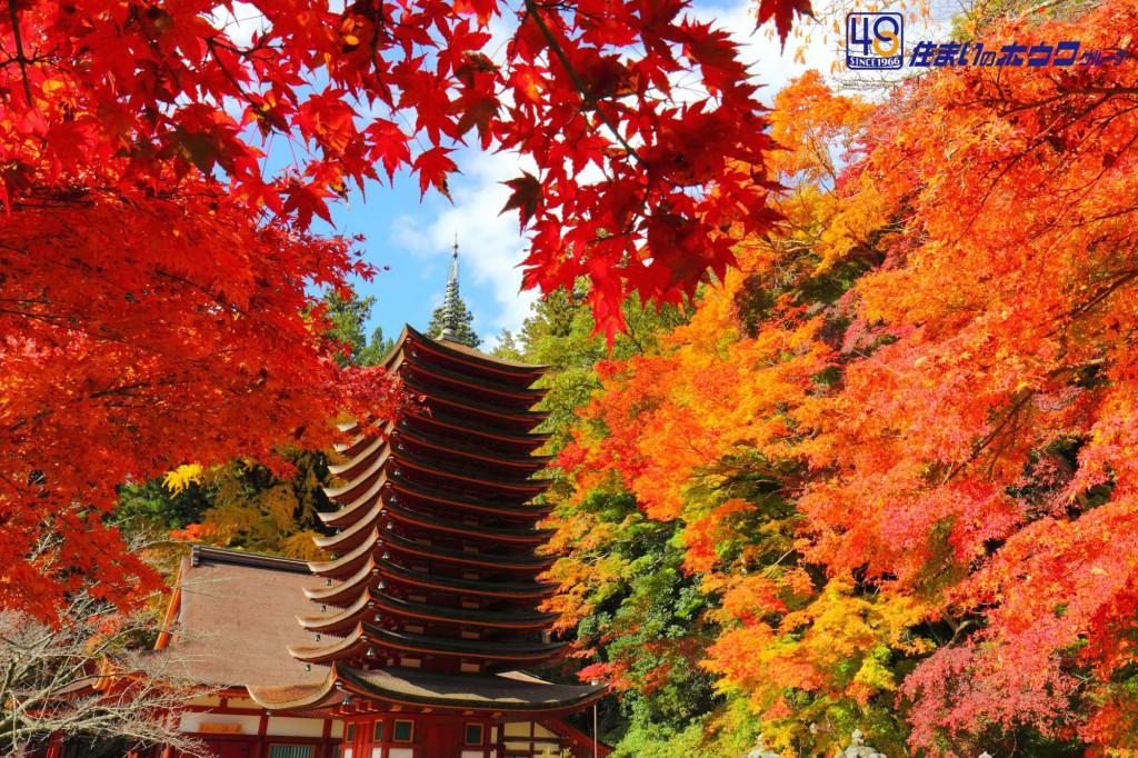 奈良の良さを写真で伝える | 神社・遺跡