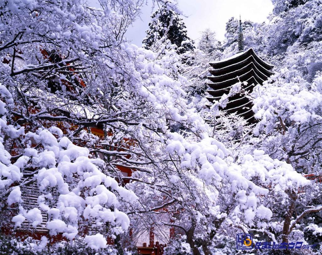 談山神社(たんざんじんじゃ)
