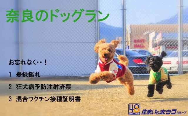 奈良県のドッグラン一覧