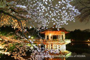 奈良市浮見堂