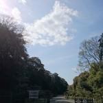 橿原神宮内の景色です。