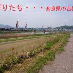 奈良県吉野川の鯉のぼり