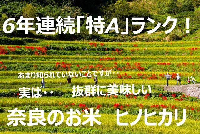 冷えても美味 | 奈良県産のお米