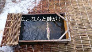 mogamigawayanaryou2