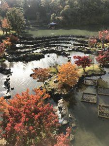 水面に映える紅葉