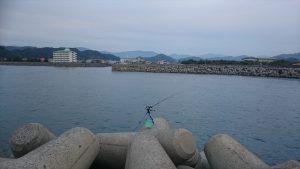 和歌山でフィッシング