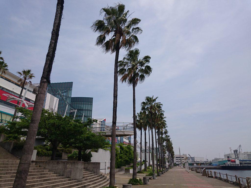 南港のATC2