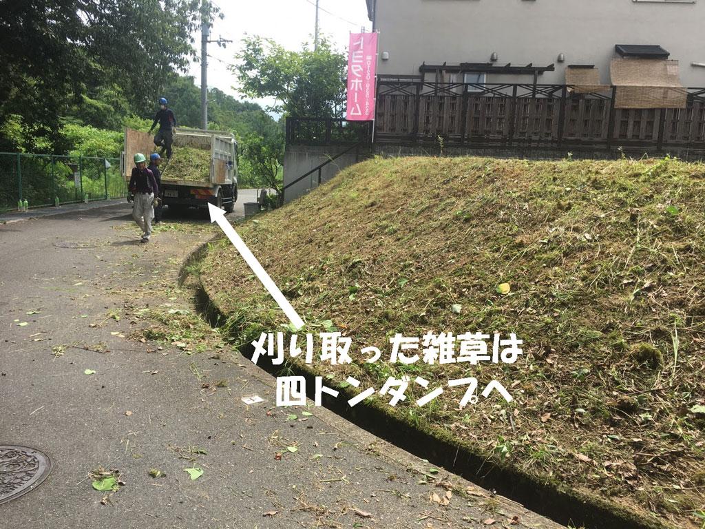 刈った草は四トンダンプで運搬
