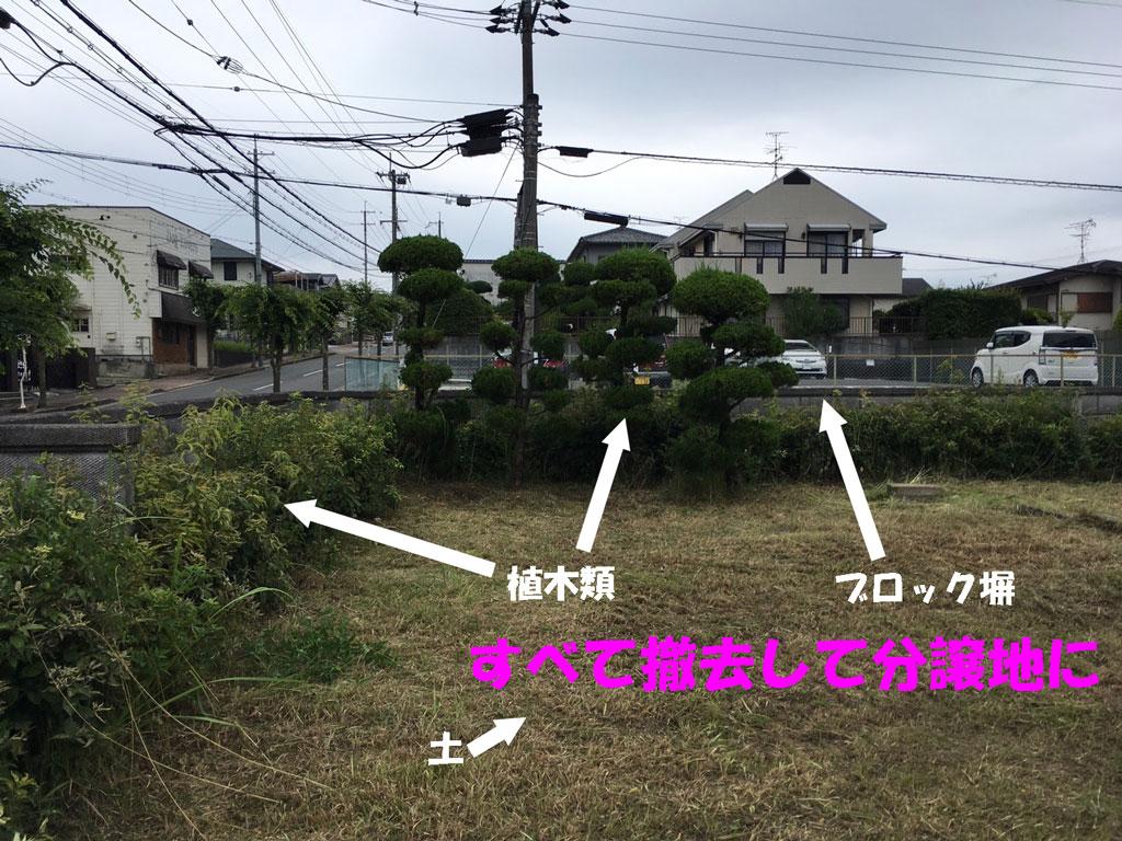 植木と残土、コンクリートブロック撤去