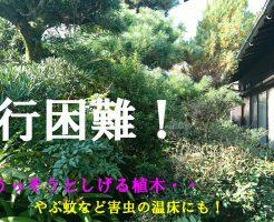 お庭の整理 | 大和郡山市で庭木の伐採と剪定、アルミフェンス取付け