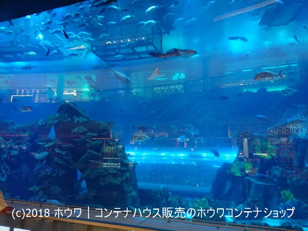 ドバイショッピングモール内の水族館