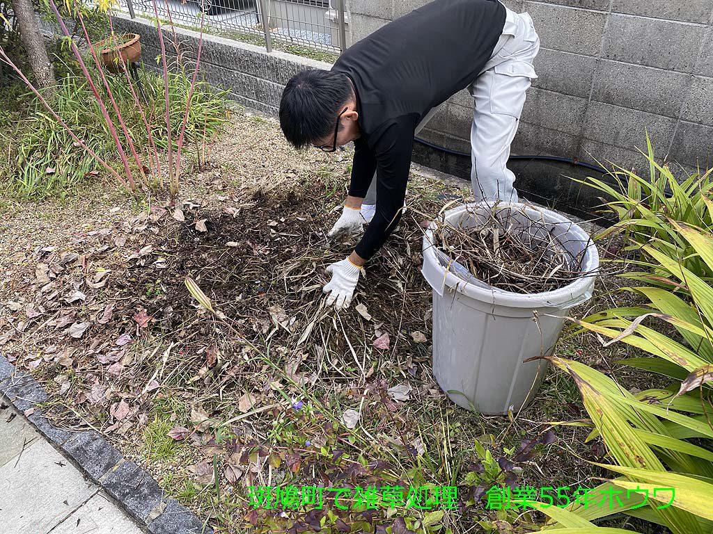 斑鳩町で便利屋のお仕事 | 枯れ草木の撤去