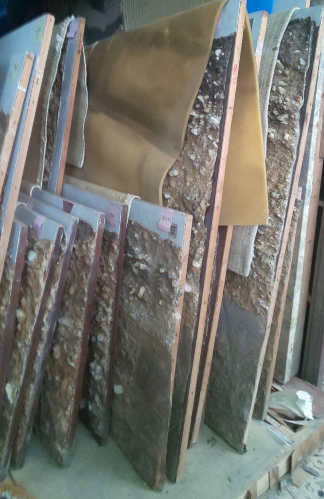 奈良文化財研究所様の剥ぎ取り標本です。