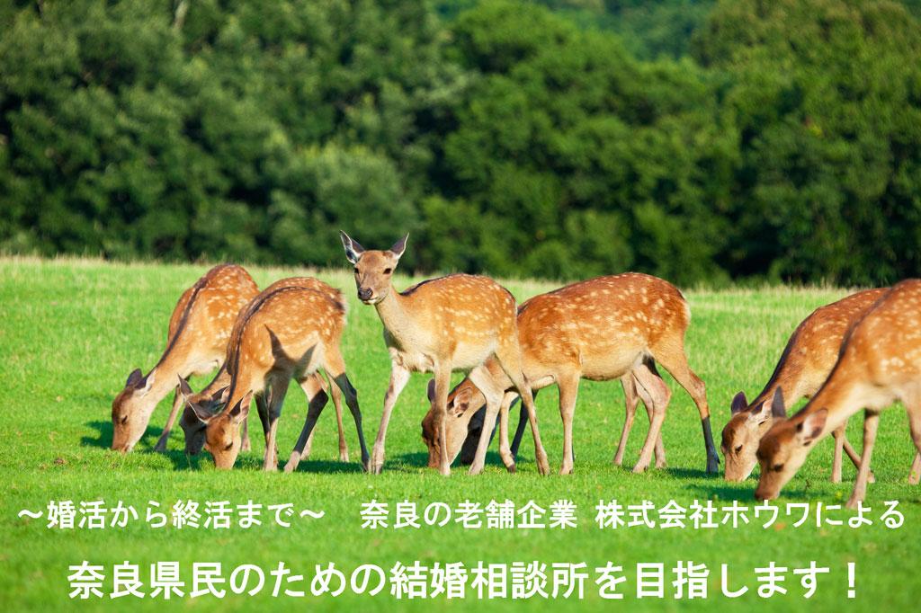 奈良県民のための結婚相談所